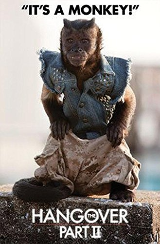 Close Up The Hangover 2 Poster Monkey (57cm x 87cm) + 1 Traumstrand Poster Insel Bora Bora zusätzlich
