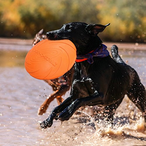 Silikon Hund Frisbee Spielzeug Training Ausübung Werfen Fliegende Scheibe Fetch Spielzeug Für Hund BPA FREI