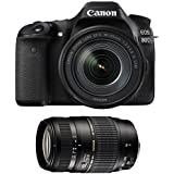 Galleria fotografica CANON EOS 80D + 18-135 IS USM + TAMRON 70-300 DI