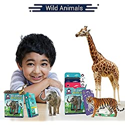 Wild Animals | Age 3-10 Years | Perfect Birthday Return Gift for Children | Pre School Learning Toys | Augmented and Virtual Reality Based Educational Game | Flash Cards