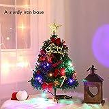 EisEyen Künstlicher Weihnachtsbaum Tannenbaum Christbaum 50cm grün Weihnachtsbaum klein mit Beleuchtung Multicolor LED und Weihnachtsschmuck (mit LED)