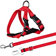 Trixie Car Harness For Cats, 20-50 cm/15 mm, Red