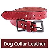 #2: PetSutra Leather Dog Collar, for Small, Medium and Large Sized Dogs, Multi Color, Multi Size (Small, Red)