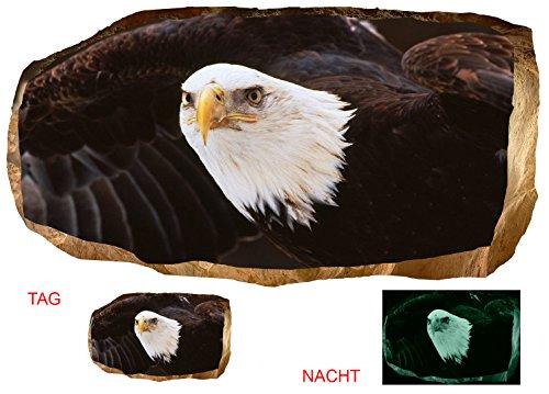 Startonight 3D Tapete Amerikanischer Adler, Wandmalerei Bild an der Wand Großformat Modern Muster Dekorative Kunst Wand 120 x 220 - Adler-raum-dekor