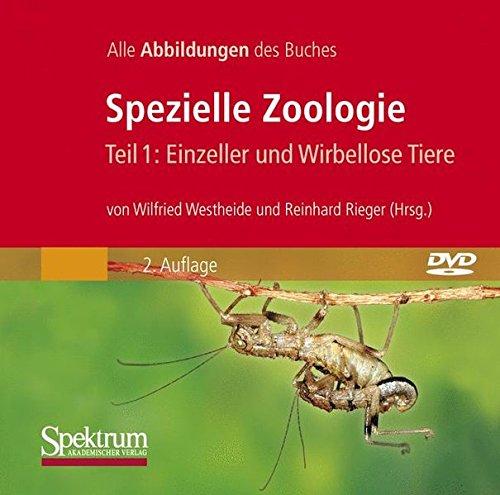 Spezielle Zoologie 1: Einzeller und Wirbellose Tiere