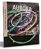 Aurora Premium Farbige E-Gitarre Saiten Nitro, orange, 10–46