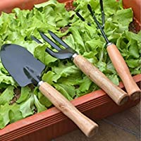 HEMIZA 3 Piece Gardening Tool Set Mini Wood Handle Cultivator, Gardening Scissors, Garden Forks, Gardening Tool Set…
