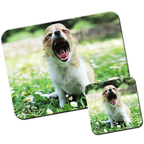 mexicano-chihuahua-taco-bell-dog-alfombrilla-de-raton-y-posavasos-diseno-de-flores-yawning-chihuahua