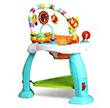 Baby Rainforest Learn Jumperoo Activity Jumper