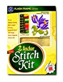 Anchor Stitch Kit - Pink Flowers