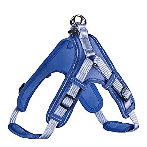 Hunter Vario Quick Cintura in Neoprene,