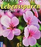 Lebensspuren: Kalender 2019 (Lebensspuren Frau und Mutter)