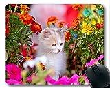 Gaming-Mauspad, Kätzchen-Ringelblumenfrühling Cat Flower-Mauspad, Mauspad für Computer cat105