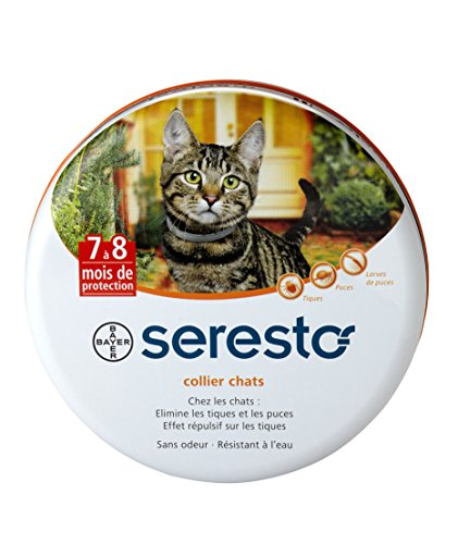 bayer-seresto-collier-antiparasitaire-pour-chats