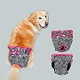 s-lifeeling Extra grandes Sexy Female pañales perro mascota pantalones lavable