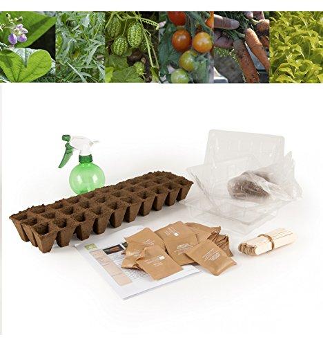 Graines bio de légumes en coffret pour jardin à l'école