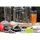 Bio Kombucha Komplettset mit Teepilz für (für 2.5 Liter Kombuchatee)