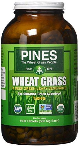 Pines International Wheat Grass, 1400 Count