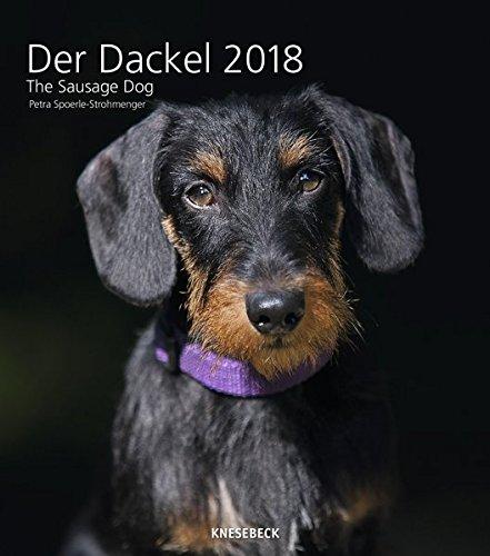Der Dackel 2018 - Tierkalender, Hundekalender, Wandkalender  -  30 x 34 cm