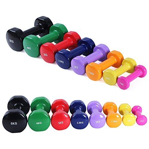 Songmics 2er Set Kurzhanteln Gymnastik Hantel Gewichts- und Farbvarianten