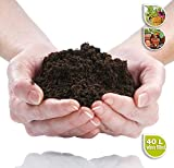 PRO Range of Compost and Additives by Northern Plants (PRO 4 - Premium Compost Potting Mix - 40L, Sack)