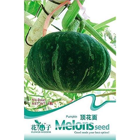 Spedizione gratuita 3 confezioni 24 di verde zucca Cucurbita Seeds Meloni Seed B027 - Verde Melone Seeds