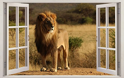 Africa Wall sticker Vinyl wall art for cars bikes caravans homes Customise4UTM (lion window) by Customise4u WallArt ()