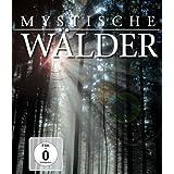 Mystische Wälder