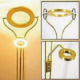 LED Deckenfluter Donna - Wohnzimmer Stehlampe aus Messing mit 2070 Lumen - LED Fluter mit warmweißem Licht für Wohnzimmer, Flur, Esszimmer, Schlafzimmer - Stehlampe Gold