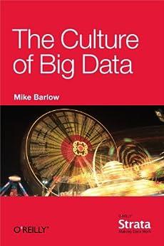 The Culture Of Big Data por Mike Barlow Gratis