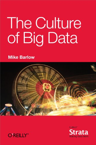 The Culture of Big Data (English Edition) por Mike Barlow