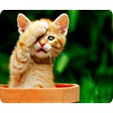 UCMDA Astonished Cat Rectangle Non-slip Thick Rubber Mouse Pad Mat for Gaming Office