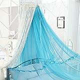FreF Prinzessin Moskitonetz Premium Moskitonetz Himmel für Bett Boden Netz Vorhänge Korean Zwei Etagen zum Aufhängen von Bettwäsche Queen1 A