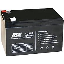 DSK 10364 - Batería Plomo tecnología Gel 12V ...