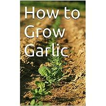 How to Grow Garlic (English Edition)