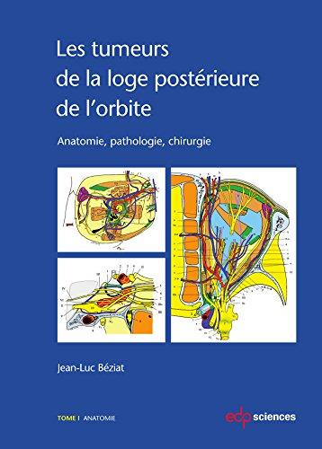 Les tumeurs de la loge postérieure de l'orbite - Anatomie, pathologie, chirurgie : Tome 1, Anatomie