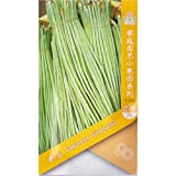 Shopmeeko Frijol largo para jardín * 50 & # 39; s (PC) * Vigna unguiculata sesquipedalis * Frijoles chinos con fideos * Frijoles chinos largos, frijoles espárragos: 3 paquetes