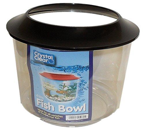 Goldfish Bowl 2