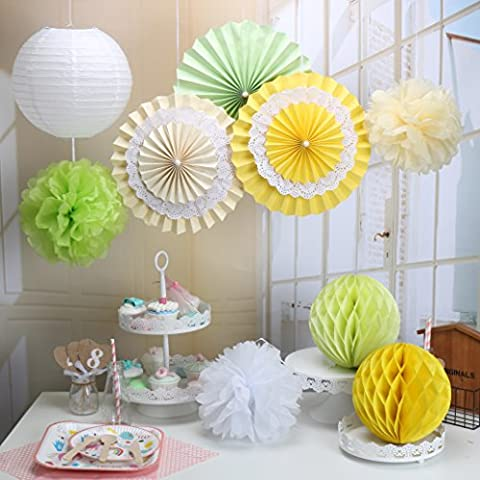 RiscaWin Set for Decoration Paper Fan,Tissue Paper Pom Poms ,Paper Lanterns,Honeycomb Balls (Set of 9) Yellow