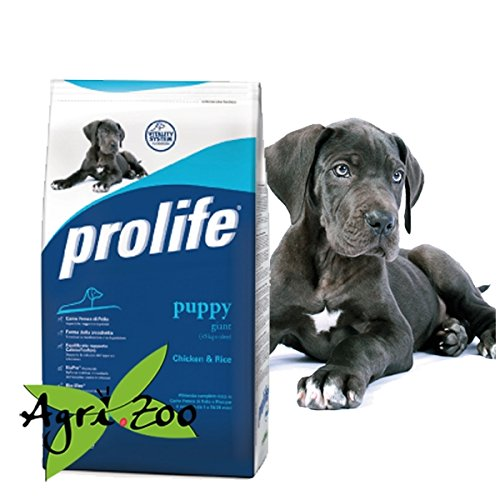 prolife-puppy-giant-12-kilogramm