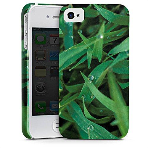 Apple iPhone X Silikon Hülle Case Schutzhülle Grashalm Tautropfen Gras Premium Case glänzend
