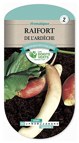 Samen Meerrettich Der Ardèche
