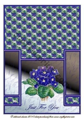violeta-africana-staggerfold-por-deborah-davies