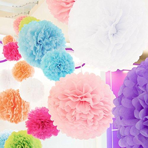 comprare on line WINOMO 10pcs 25cm Carta Velina Fiore Pom Pom per Decorazione Matrimonio Festa Baby Shower prezzo