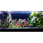 Aquarium Rock Fish Tank Decoration Slate 100% Natural Ideal For Caves WOOD STONE 10kg Set 16
