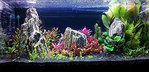Aquarium Rock Fish Tank Decoration Slate 100% Natural Ideal For Caves WOOD STONE 10kg Set 8