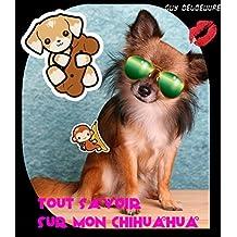 Tout Savoir Sur Mon Chihuahua