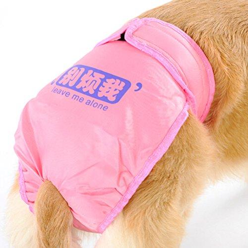 ueetek-chien-reutilisable-couches-sanitaires-pantalon-avec-ventre-bandes-sous-vetements-underpant-po