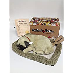 Perfect Petzzz - Peluche interactivo de perro Pug (25 cm, efecto de respiración)