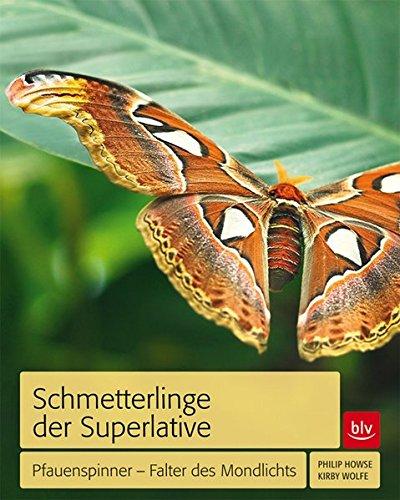 Schmetterlinge der Superlative: Pfauenspinner - Falter des Mondlichts
